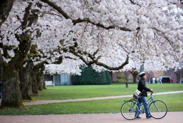 Mùa xuân ở nước Mỹ