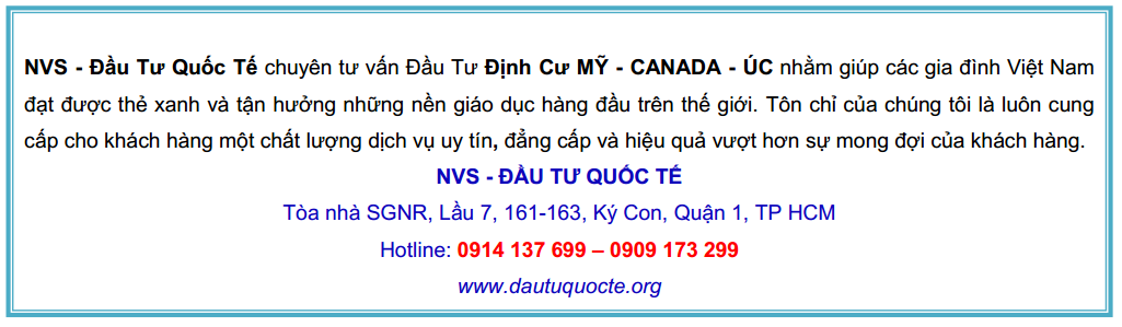 Chan bai viet website 1