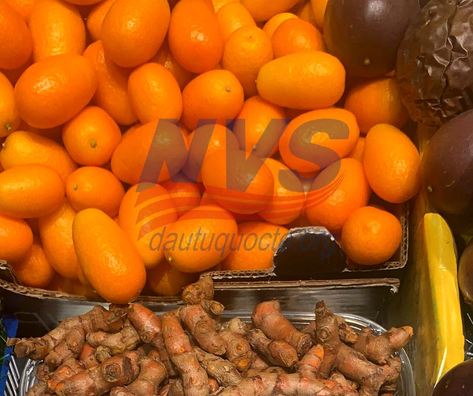 Thực phẩm tại các khu chợ rẻ và tươi ngon