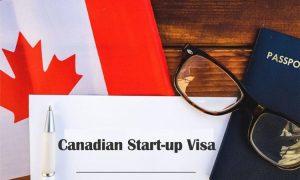 Thống kê Visa khởi nghiệp Canada (Start-up Visa) 5 năm qua